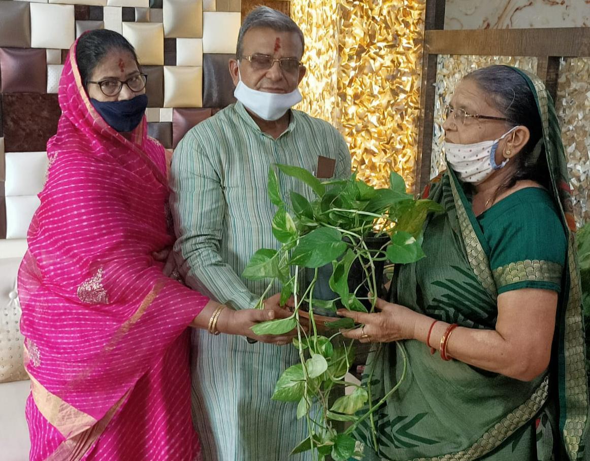 बहन को राखी पर भाई ने दिया पौधा लगा गमला उपहार